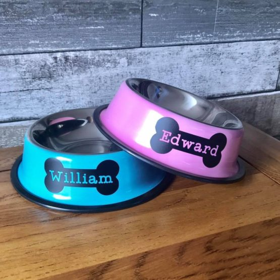 Personalised Coloured Pet Bowl